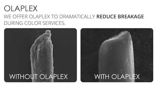 5-Olaplex.jpg